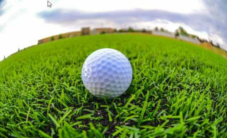 昼間忙しい方に!深夜や早朝にできるアルバイト「ゴルフボールの球拾い」